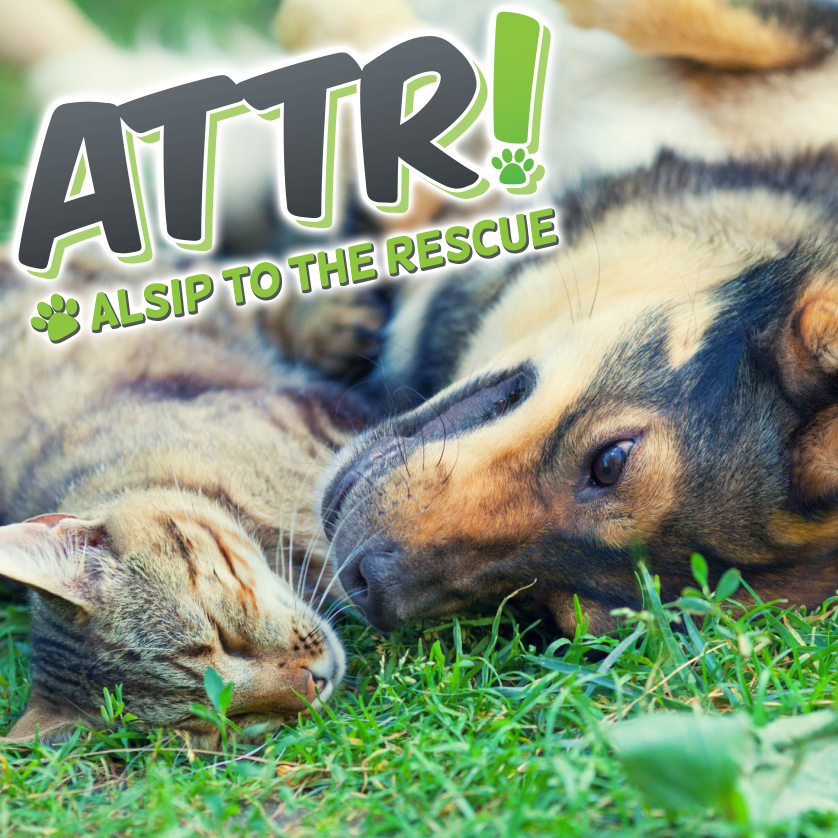 Alsip to the Rescue Adoption Center located within Alsip Home & Nursery