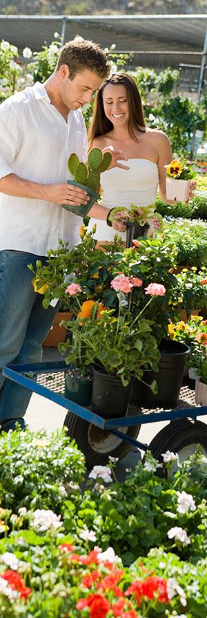 Alsip Home & Nursery Garden Club Incentive Program