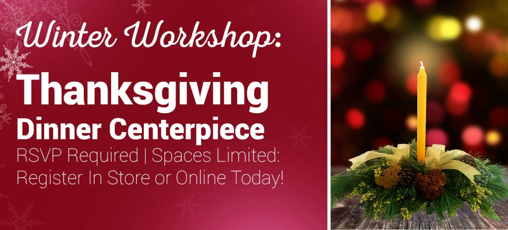 Come and create a lovely Thanksgiving Centerpiece using fresh cut greens during our Winter Workshop!