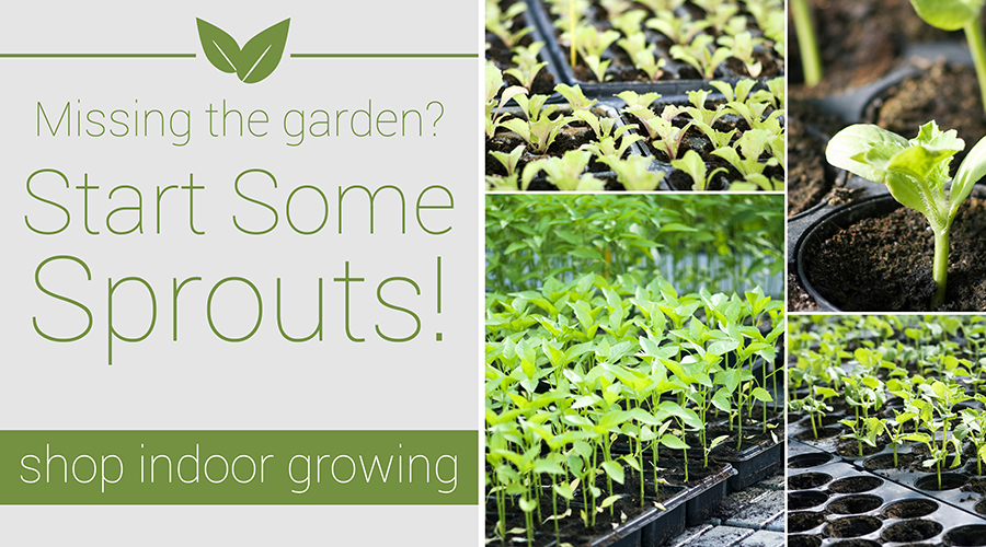 Indoor Growing Supplies available at Alsip Home & Nursery