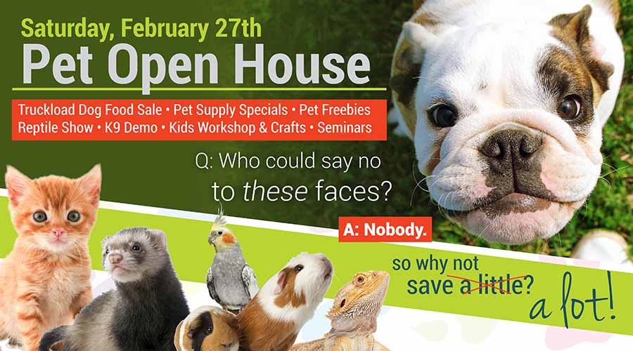 Pet Open House, February 27th, 2016