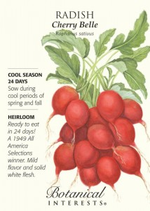 Botanical Interests - Radish - cool season