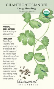 Botanical Interests - Cilantro - cool season