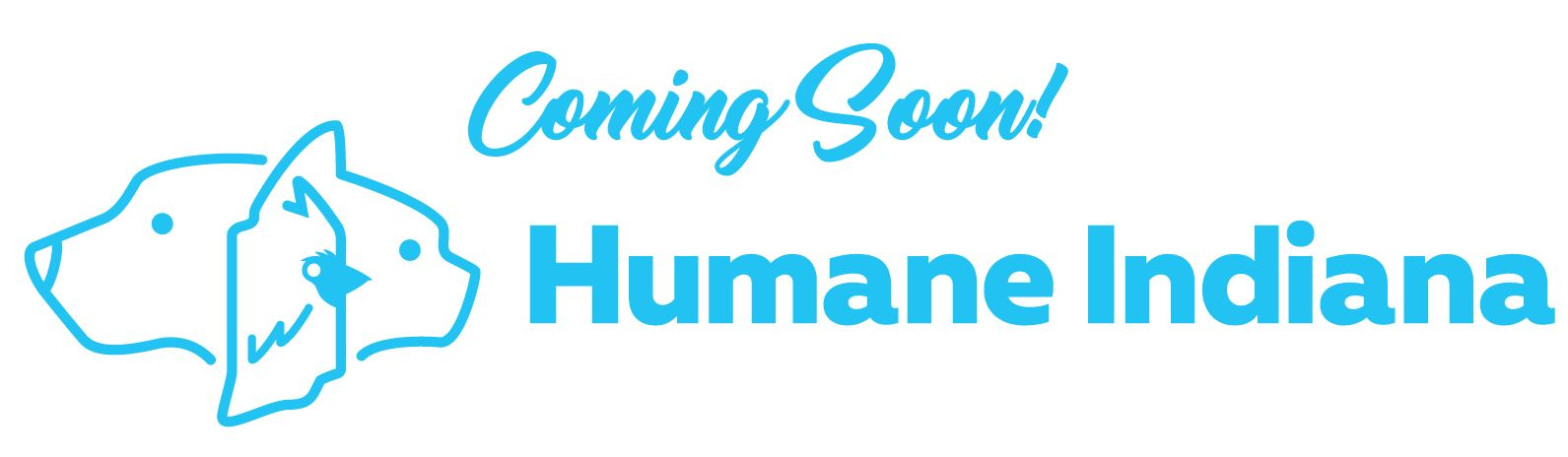 Humane Indiana South Shelter To Open In Alsip Home Nursery St John