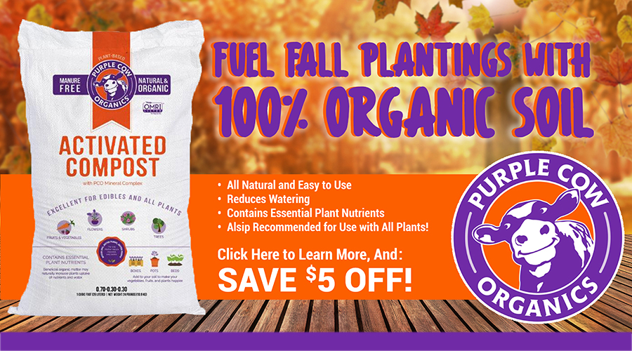 Fuel Fall Plantings with Purple Cow Activated Compost