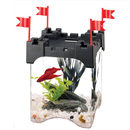 Shop Betta Fish Aquarium Kits from Alsip Home & Nursery