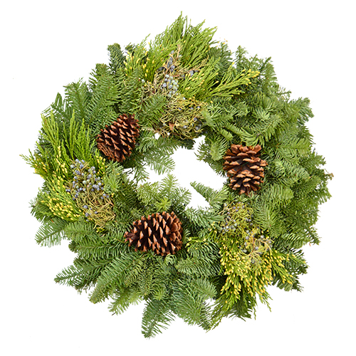 "16"" Freshcut Mixed Wreath is made up of noble fir, cedar, juniper, and adorned with pinecones."