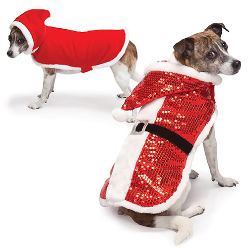 Holiday Outfits for Dogs are available at Alsip Home & Nursery