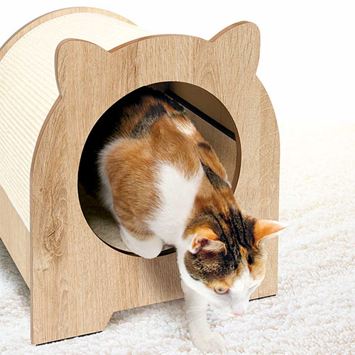 Cat Towers and Scratching Posts are available from Alsip Home & Nursery