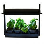 Sunblaster LED Micro Growlight Garden
