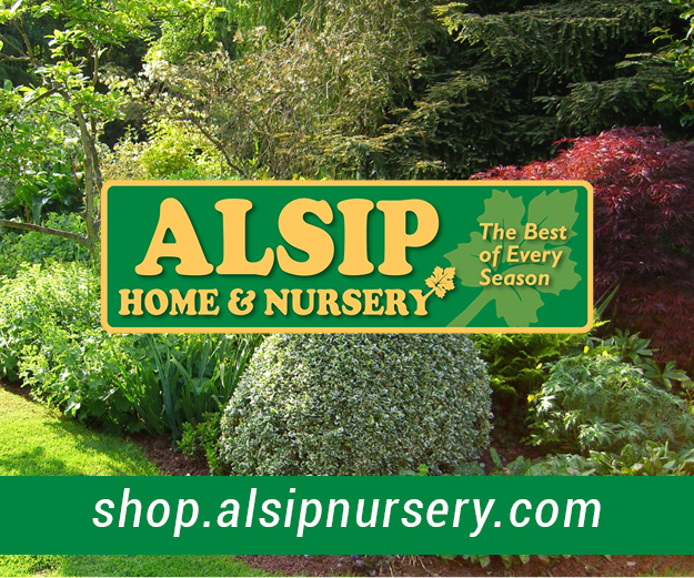 Shop Alsip Plants3