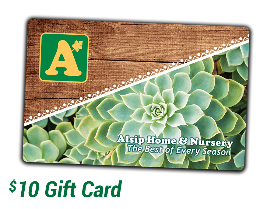 Purchase a $10 Alsip Home & Nursery Gift Card