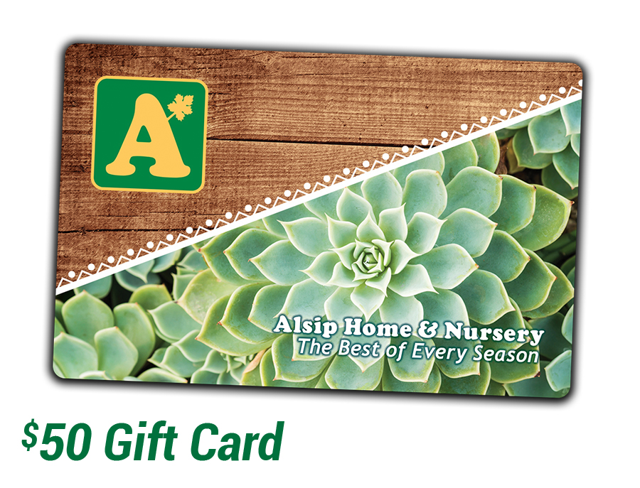 Purchase a $50 Alsip Home & Nursery Gift Card