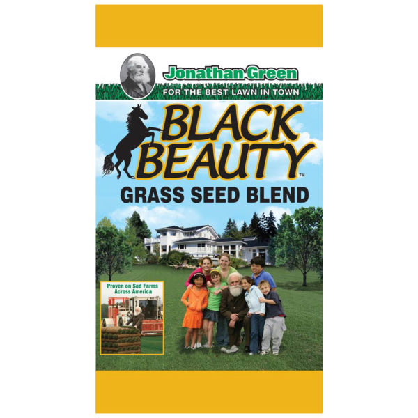 Black Beauty Grass Seed, 7500 Sq. Ft.