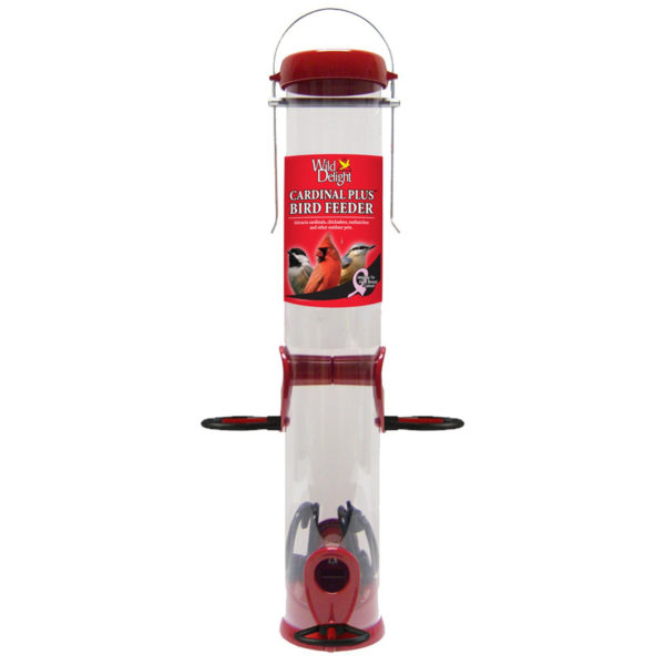 DROLL YANKEES CARDINAL FEEDER, 15-INCH, RED