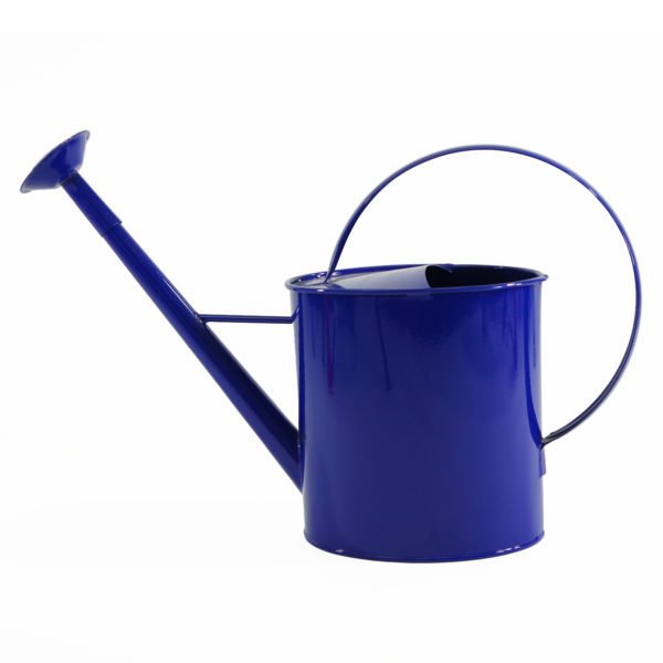 Austram Metal Watering Can, 1 Gal., Blue