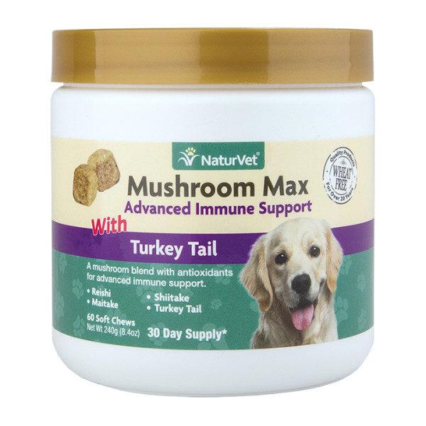 mushroom max