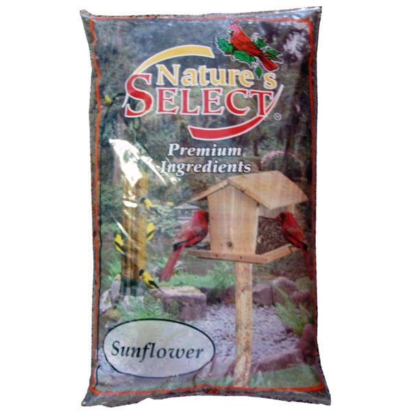 NATURE'S SELECT BLACK OIL SUNFLOWER SEED, 10 LB