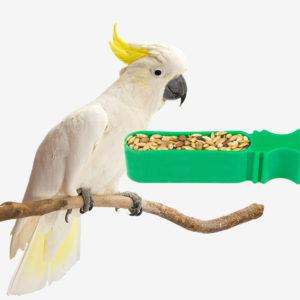 Bird Bowls & Feeders