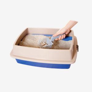 Litter & Litter Boxes