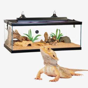 Reptile Tanks & Habitats