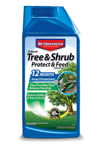 BioAdvanced Tree and Shrub Protect and Feed