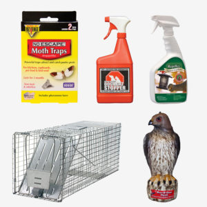 Animal Repellents & Deterrents