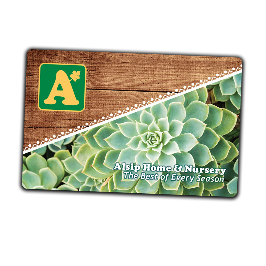 alsip-gift-card