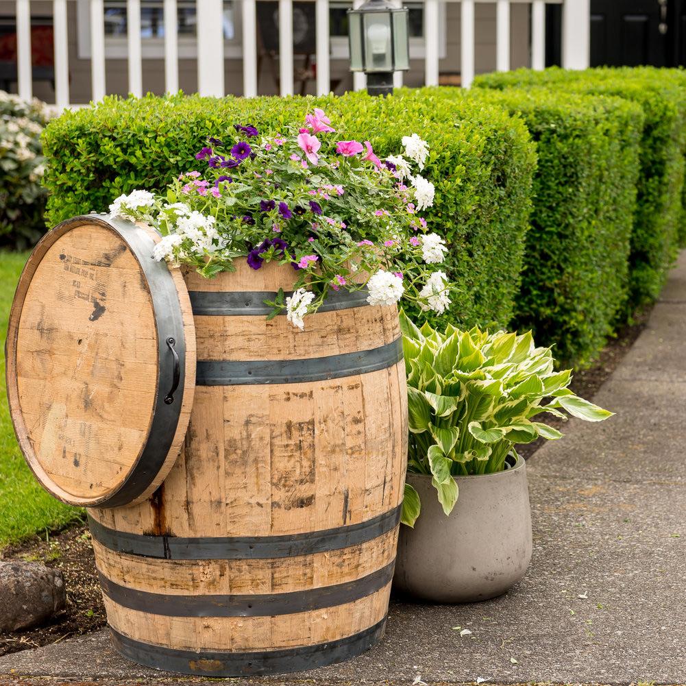 Oak Whole Whiskey Barrel Alsip Home Nursery