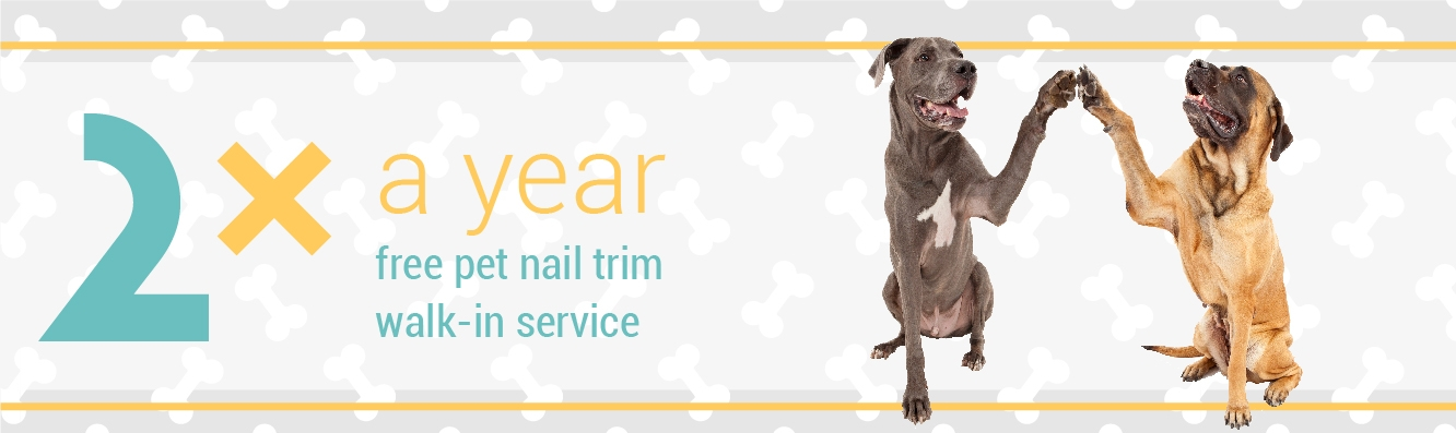 2x a Year FREE Pet Nail Trims with your Chew Crew Membership