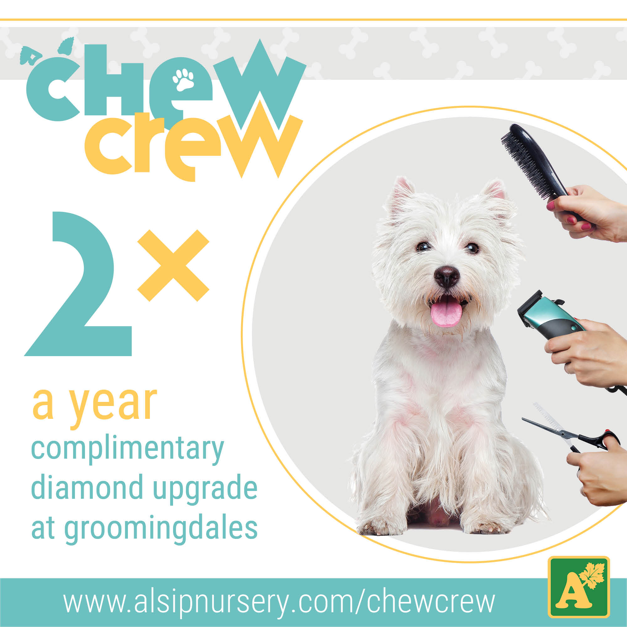 Chew Crew Perks - Diamond Upgrades for Groomingdales Pet Salon