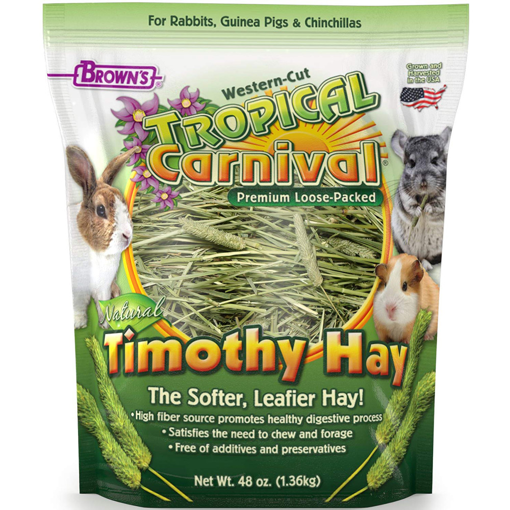 Tropical Carnival® Natural Timothy Hay, 48 oz. | Alsip Home & Nursery