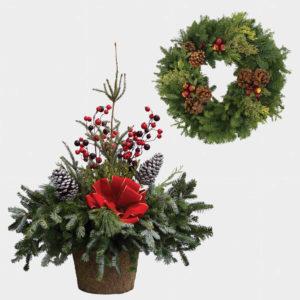 Winter Annuals & Fresh Cut Greenery