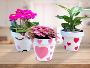 Valentine's Flower Pot Painting Workshop