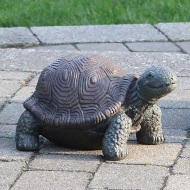 Medium Tortoise Statue 8 Alsip Home Nursery