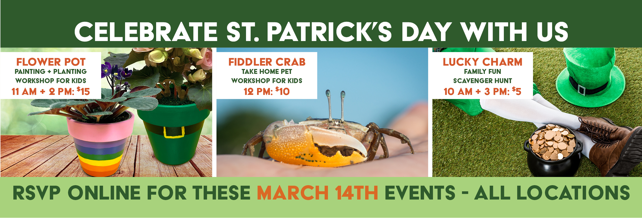 St. Patricks Day Events at Alsip Home & Nursery