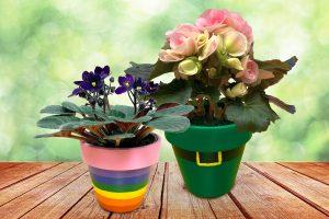 St Patrick's Painted Pots