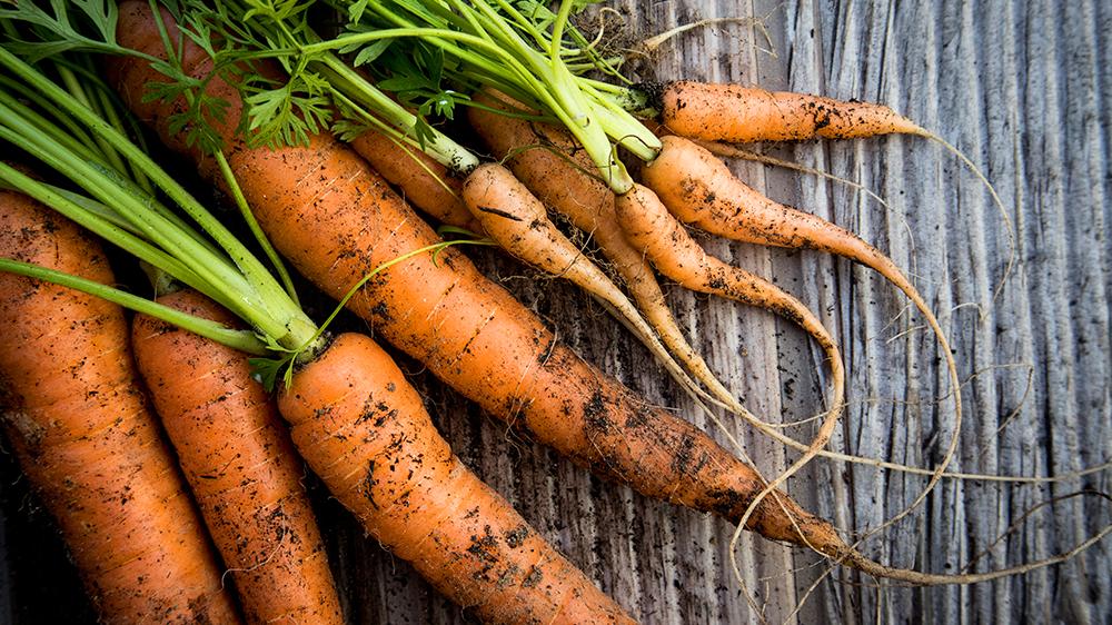 9-kitchen-garden-edibles-fresh-carrots