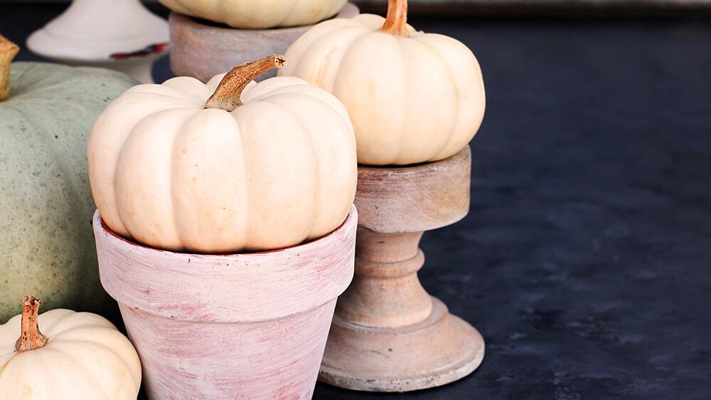 alsip-gourd-geous-fall-displays-pale-pumpkins-monochromatic