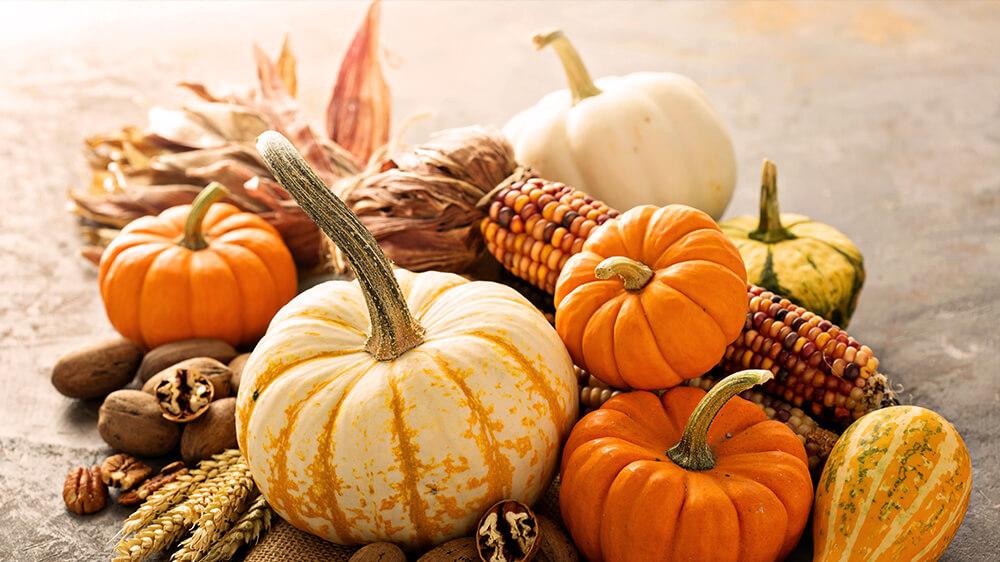 alsip-gourd-geous-fall-displays-pumpkin-corn-thanksgiving-decor