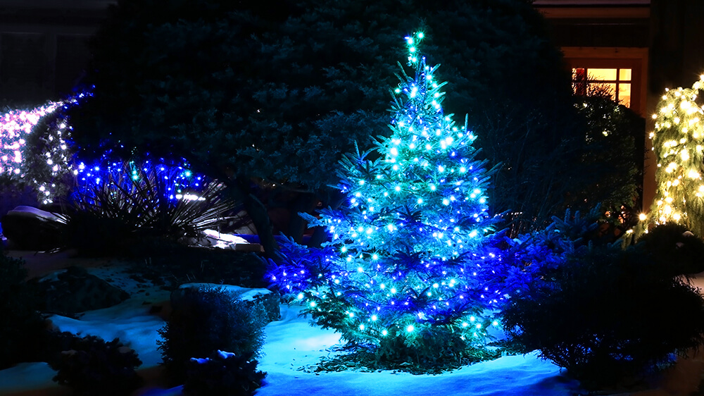 alsip-christmas-lights-blue-tree-on-snowy-lawn