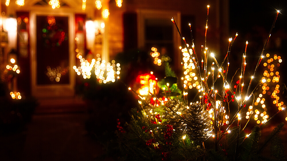 alsip-christmas-lights-lit-branches-in-planter