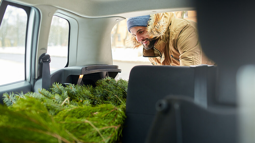 Alsip Real Christmas Tree Care man putting tree in the back of vehicle