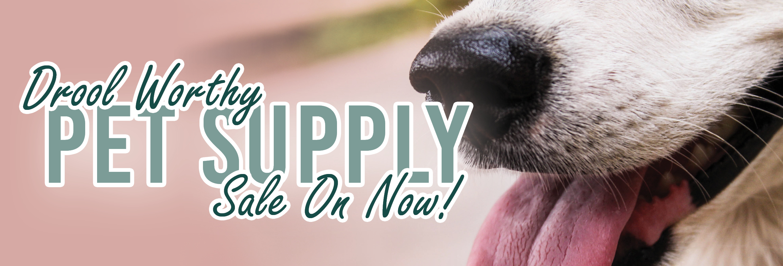 Drool Worthy Pet Supply Sale on Now at Alsip Home & Nursery