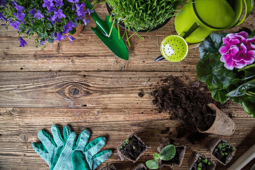 alsip winter wake up gardening tools