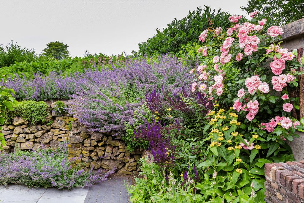 gorgeous cottagecore garden in the summertime alsip nurseries