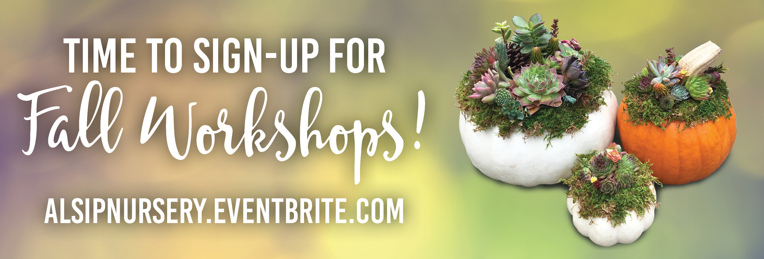 Time to Sign Up For Fall Workshops